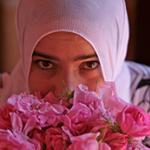 Maroc vallee des roses