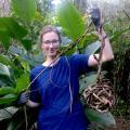 Ecovolontariat pour la protection des loutres au Brésil